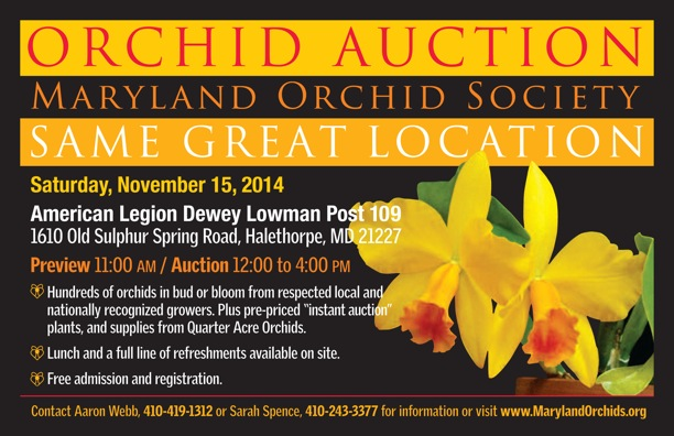 Maryland Orchid Society Annual Auction 2014