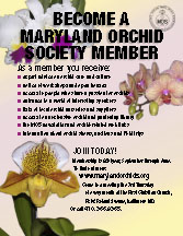 Maryland Orchid Society Membership Flyer